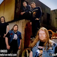 Fallen Angels 2008