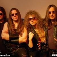 Metal Law 2008